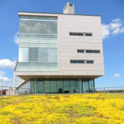 Image of Outside Of Syracuse Center of Excellence Building